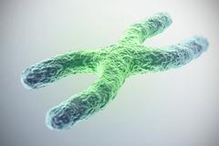 X chromosome, green in the center, the concept of infection, mutation, disease Stock Illustration