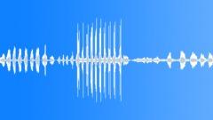 Animals Cows Heifer Vocal Calls Rhythmic Throaty Sudden Intensity Swel Sound Effect