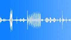 Animals Cows Heifer Vocal Calls Short Rhythmic Grunts Snorts Fierce M Sound Effect