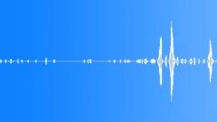 Animals Cows Heifer Vocal Calls Spread Throaty Roar Calm Clunks Clink Sound Effect