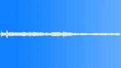 Crowd Auditorium Active Energized Shh Settle Ls Sound Effect