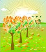Herbstblätter Stock Photos