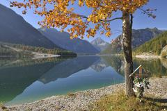 Wooden Cross Beneath Poplar Tree in Autumn, Plansee, Tyrol, Austria Stock Photos