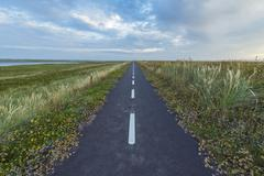 Bikeway on Headland in the Morning, Thy National Park, Agger, North Jutland, Stock Photos