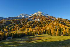 Mountain with Larches in Autumn, Vigo di Fassa, Dolomites, Trentino-Alto Adige, Stock Photos