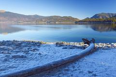 Lake Walchensee with Hoar Frost on Shore, Kochel am See, Upper Bavaria, Bavaria, Stock Photos