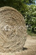 Hay ball detail Stock Photos