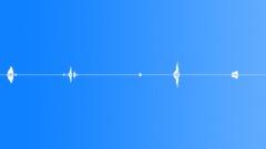 Dogs Dog B Chirp Squawks x4 L Sound Effect