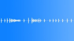 Dogs Dog CimarrFemale Barks Howls Many Agitated Ls Sound Effect