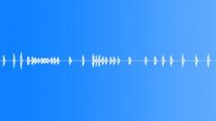 Dogs Dog CimarrFemale Barks Howls Many Agitated Rs Sound Effect