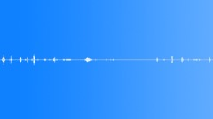 Dogs Dog C Snort Prance Tug of War Rs Sound Effect