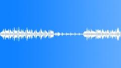 Animals Sea Mammals Dolphins Bottlenose Single Vocal Calls Sing Nice Sound Effect