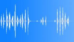 Animals Sea Mammals Dolphins Bottlenose Single Vocal Calls Sing Suffoc Sound Effect