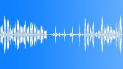 Animals Sea Mammals Dolphins Bottlenose Single Vocal Calls Sing Throat Sound Effect