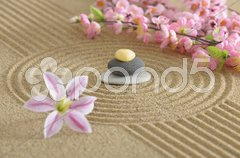 Zen garten in sand Stock Photos