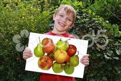 Glückliches Kind mit Hinweisschild Stock Photos