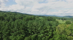 Shenandoah Valley Virginia Aerial Footage - Hold at Tree Top Altitude Stock Footage
