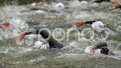 Schwimmgruppe Stock Photos