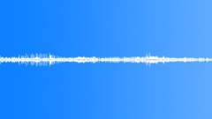 Birds South America Hummingbird Close Trill Constant Flutter Rumble Va Sound Effect