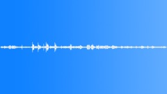 Birds Various Hummingbird Twitter Close Wings Buzz Restless Trill Othe Sound Effect