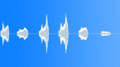 Animals Tigers Siberian Single Groans Series x6 Annoyed Tired Jorik E Sound Effect