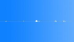 Animals Tigers Siberian Single Huff Series x5 Agitated Choke Jorik Ex Sound Effect