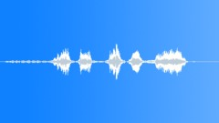 Sports Voice Football What The1 R Sound Effect