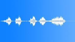 Sports Voice Football What The2 L Sound Effect