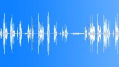 Voices Asian Male Vietnamese Old Man Speech Short Female Voice Asks Sound Effect