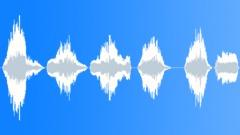 Voices Crowd Exterior Vietnamese Cheers Series x6 Male Scream Shout L Sound Effect