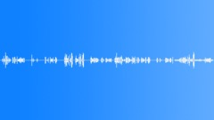 Military Iraq WT06 Voice Marine Yell Many Random Interior Tent during Sound Effect