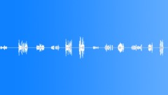 Military Iraq WT18l Voices Marines Yell Singles Random Spacing - fain Sound Effect