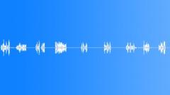 Military Iraq WT25e Voices Marines Yell Singles Battle Shouts Random Sound Effect