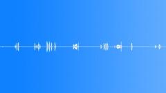 Military Iraq WTIR01 Voice Arabic Goat Herder Male Click Whistle Shou Sound Effect