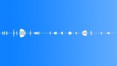 Military Iraq WTIR02 Voice Arabic Goat Herder Male Whistle Trill Shou Sound Effect