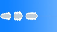 Military Iraq WTIR13 Voice Arabic Woman Trill x3 L Sound Effect