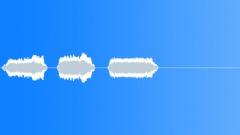 Military Iraq WTIR13 Voice Arabic Woman Trill x3 R Sound Effect