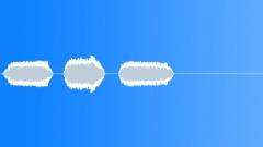 Military Iraq WTIR13 Voice Arabic Woman Trill x3 Rs Sound Effect