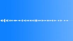 Military Iraq WTIR18 Voice Arabic Female Wail Anguish Lc Sound Effect
