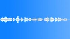 Military Iraq WTIR20 Voice Arabic Female Young Wail Anguish Broken - Sound Effect