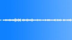 Military Iraq WTIR29 Voices English Arabic Spanish Marine Iraqi Trying Sound Effect