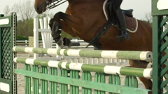 SLOW MOTION: Showjumping horse hitting a fence and a pole falls down in paddock Stock Footage