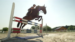 SLOW MOTION: Woman rider training showjumping high fences with horse in paddock Stock Footage