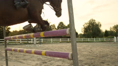 SLOW MOTION: Woman rider training showjumping high fences with mare in paddock Stock Footage