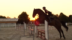 SLOW MOTION: Woman rider has a jumping lesson with horse at golden summer sunset Stock Footage