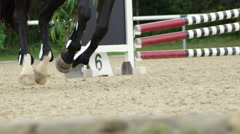 SLOW MOTION CLOSE UP: Black horse cantering in equestrian showjumping show Stock Footage