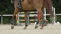 SLOW MOTION: Equestrian sport showjumping competition in outdoors sandy arena Stock Footage
