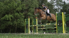 SLOW MOTION: Young female jumping over oxer fence on strong brown horse Stock Footage