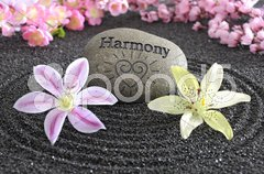 Zen Garten in Harmonie Stock Photos