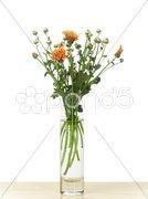 Flower Kuvituskuvat